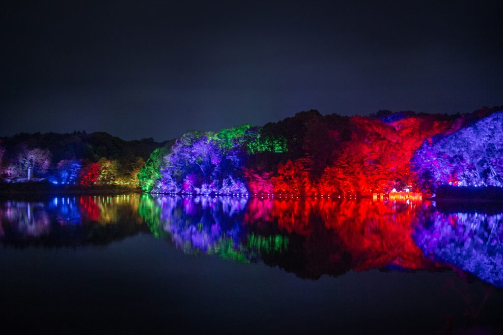 Team Lab Forest and Lake Light Festival 1