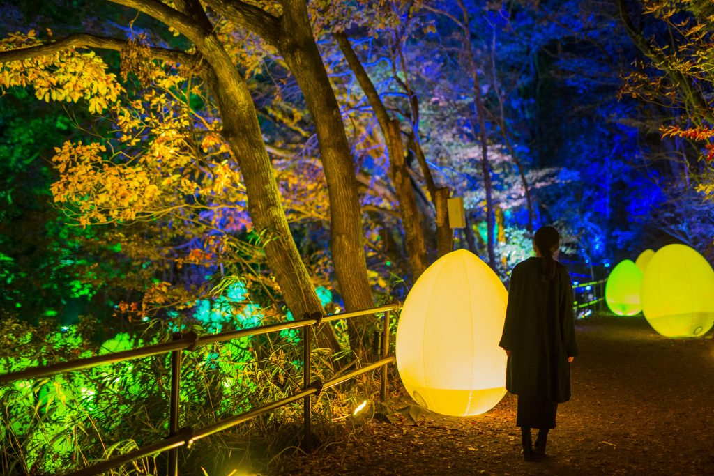 Team Lab Forest and Lake Light Festival 3