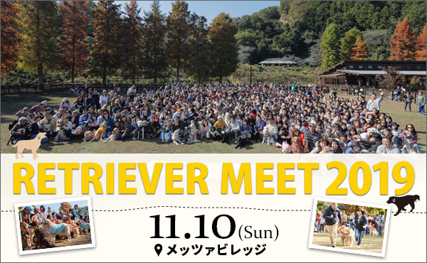 RETRIVER MEET 2019 1